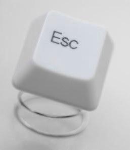 Английские IT-специалисты хотят работать за рубежом