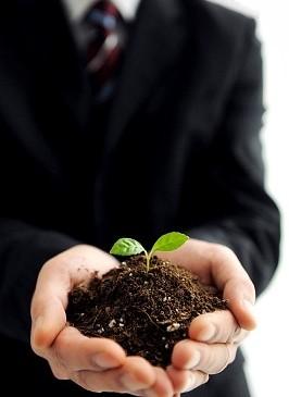Компании, «выращивающие» управляющих изнутри, добиваются лучших результатов