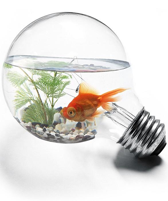 Korn/Ferry: Топ-менеджеры глобальных бизнесов не довольны уровнем инноваций в своих компаниях