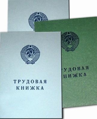 Трудовые книжки в России могут быть отменены в 2012 году