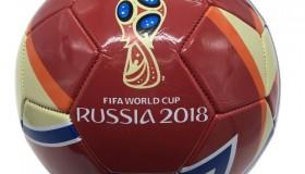 На фоне ЧМ 2018 в России выросло число желающих стать футбольными тренерами