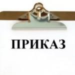 Директором по управлению рисками «АльфаСтрахование» назначена Вера Соколова